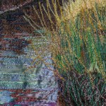 Cley-next-the-sea detail